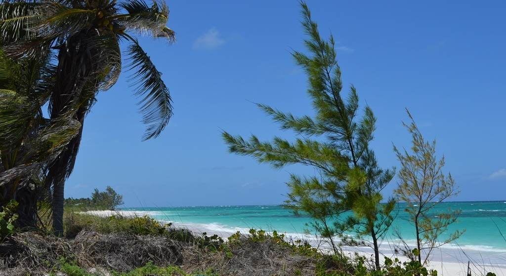 Land for Sale at Beachfront lot on 7 mile beach in Greenwood, Cat Island Greenwood Estates, Cat Island, Bahamas