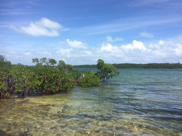 Land for Sale at Vacant Land in Sand Banks Creek, Abaco Sandbanks Creek, Treasure Cay, Abaco Bahamas