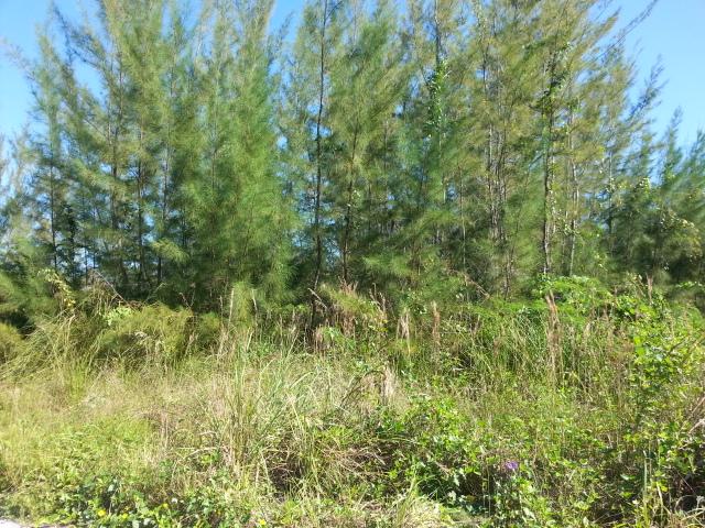 Land for Sale at Lot#16 Block # 9 Barns Road Coral Heights Coral Harbour Coral Harbour, Nassau And Paradise Island, Bahamas
