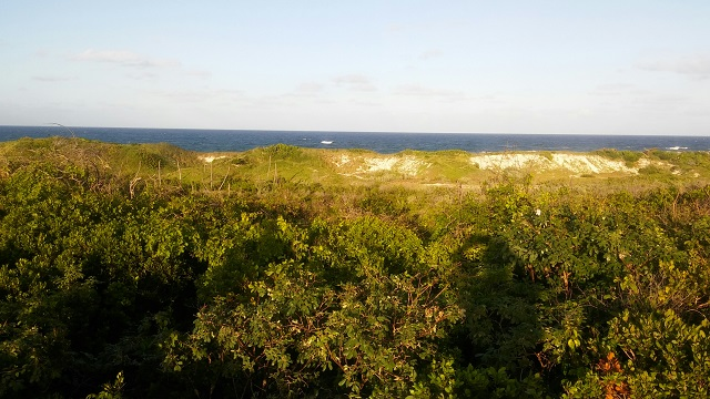 Land for Sale at Large Lot in Miller's Long Island - MLS 29255 Long Island, Bahamas