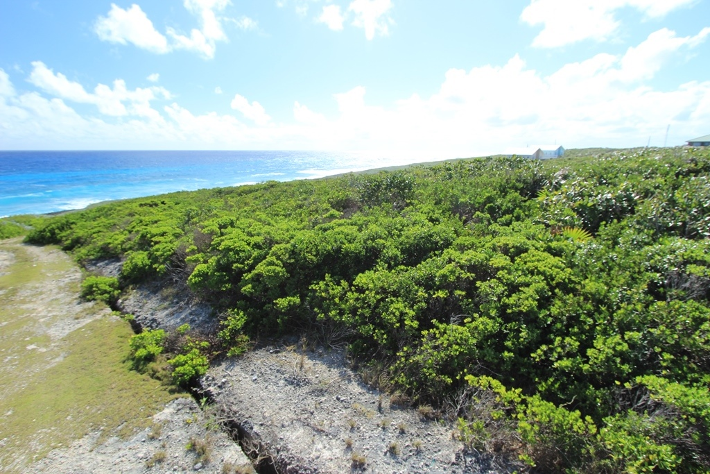 Land for Sale at Hill Top Views in Yellow Wood Lot N, Abaco, Bahamas - MLS 28872) Yellow Wood, South Abaco, Abaco Bahamas