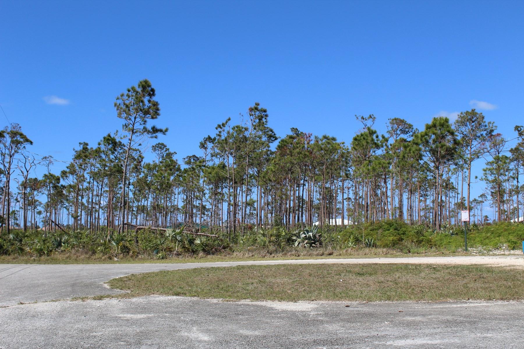 Land for Sale at Braemar Single Family Lot Bahamia, Grand Bahama, Bahamas
