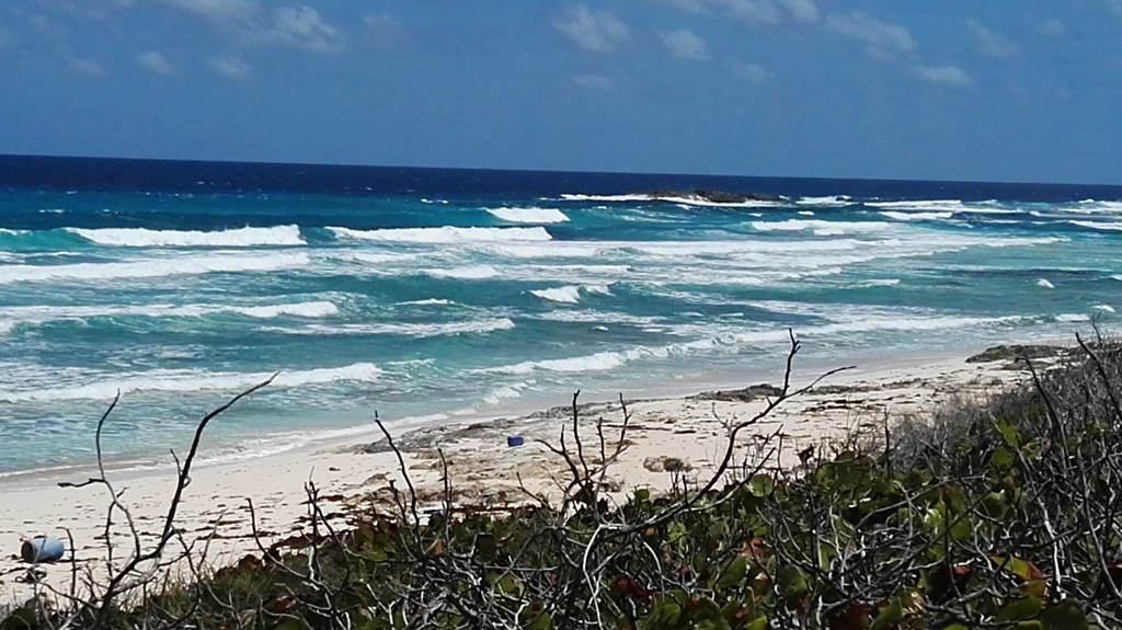 Land for Sale at 4-acre Beachfront property on Long Island MLS: 29679 Long Island, Bahamas