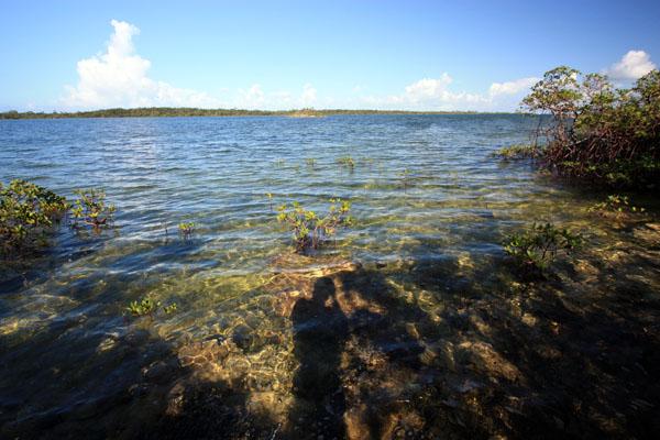 Land for Sale at Sand Banks Creek, Near Treasure Cay, Beautiful Waterfront Property Sandbanks Creek, Treasure Cay, Abaco Bahamas