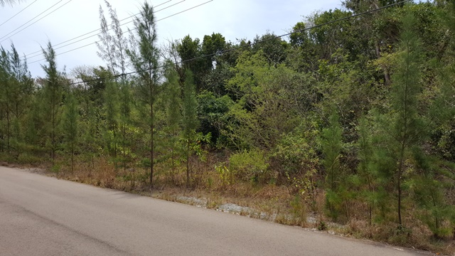 Land for Sale at Love Estates Lot MLS:31185 Windsor Field Road, Nassau And Paradise Island, Bahamas