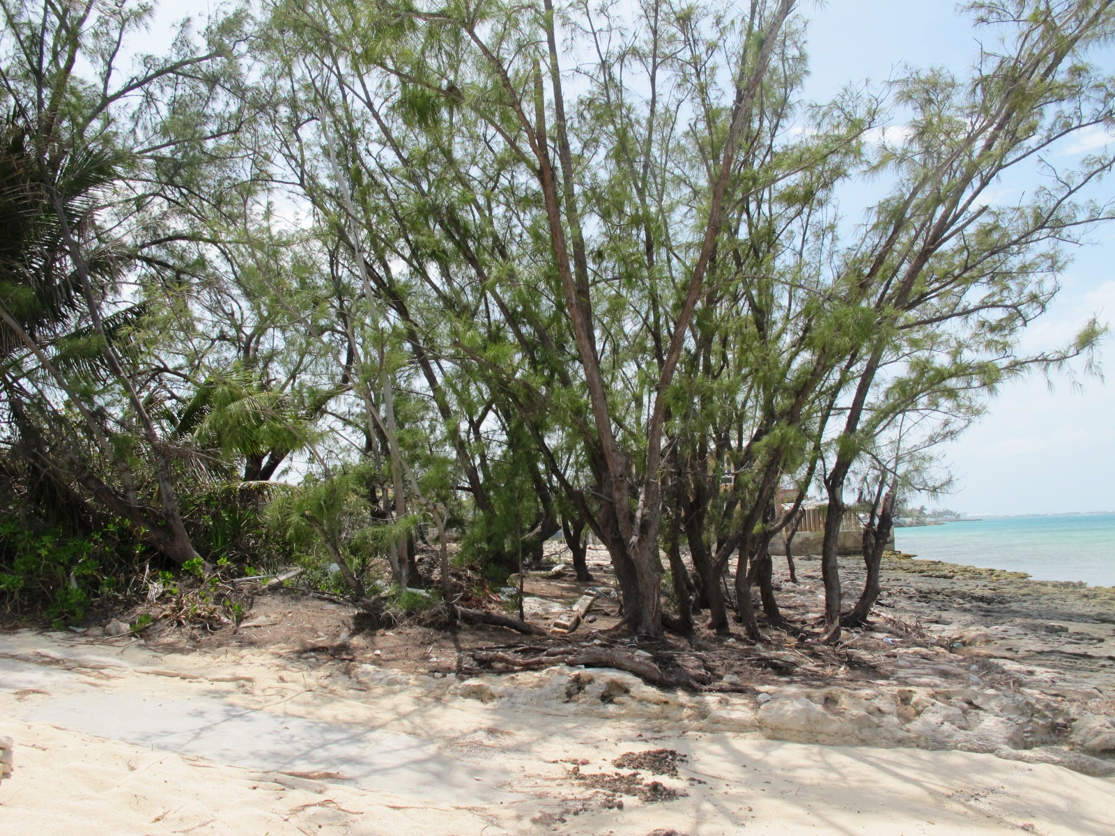 Land for Sale at Stunning Eastern Road Oceanfront Lot - MLS 30287 Eastern Road, Nassau And Paradise Island, Bahamas