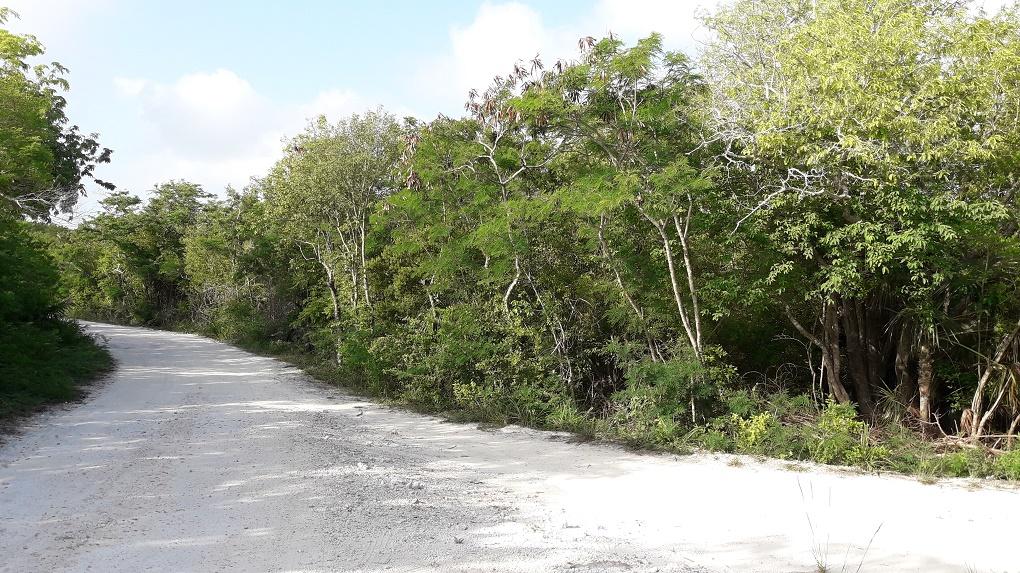 Land for Sale at Hooper's Bay Beach Acreage Hoopers Bay, Exuma, Bahamas