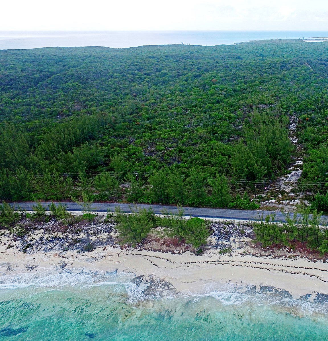 Land for Sale at Development Acreage, Central Eleuthera - Investment Opportunity - MLS 30517 James Cistern, Eleuthera, Bahamas
