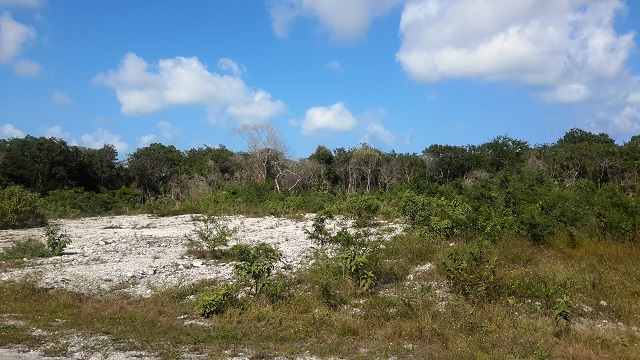 Land / Lot voor Verkoop een t 180 Acres - Investment Property - Alexander, Exuma - MLS 30587 Exumas, Bahama Eilanden