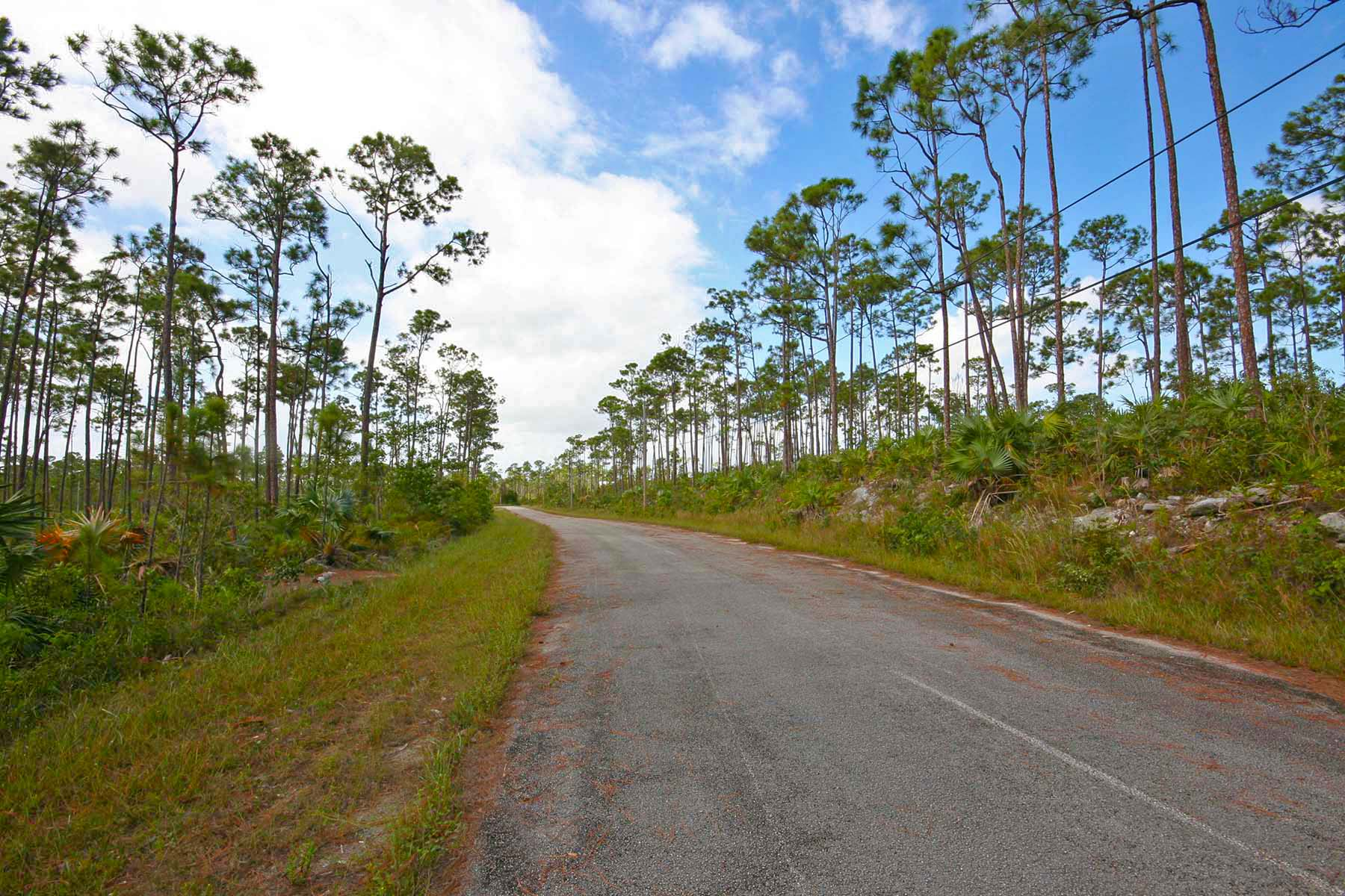 Land for Sale at Affordable Multi-Family Lot in Lovely Developed Neighborhood! Shannon, Grand Bahama, Bahamas