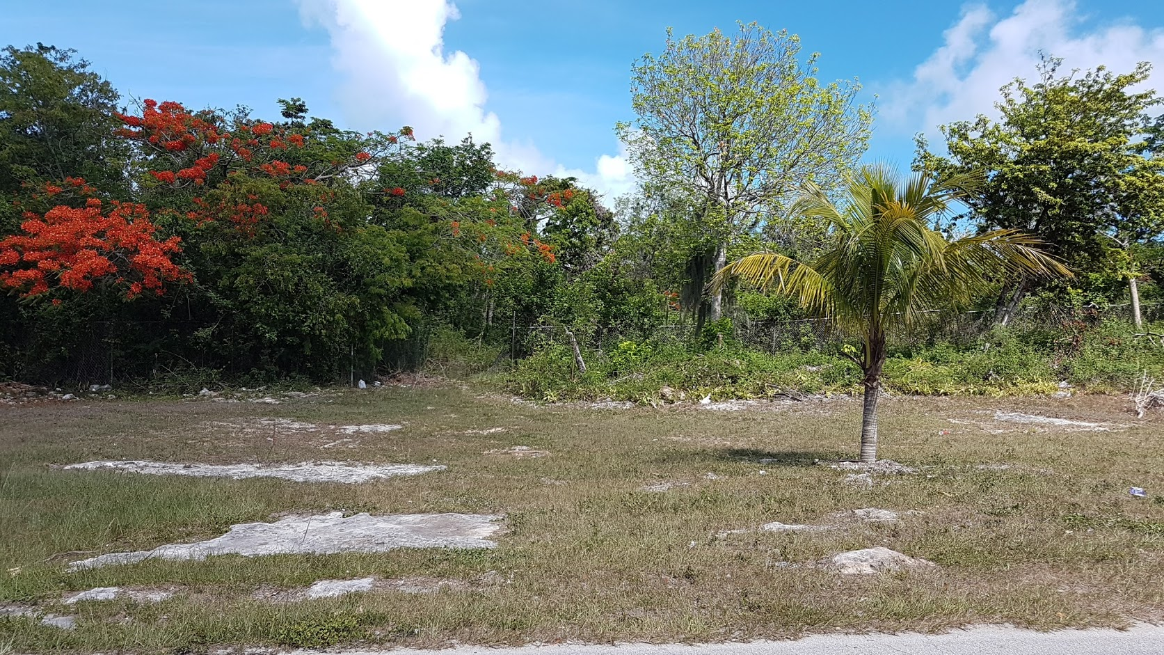 Land for Sale at 50,000 sq. ft. Lot St. Augustine's Monastery Nassau And Paradise Island, Bahamas