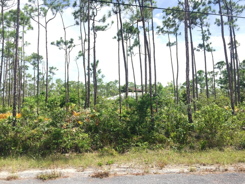 Land for Sale at Devonshire Duplex Lot - MLS#31831 Devonshire, Grand Bahama, Bahamas