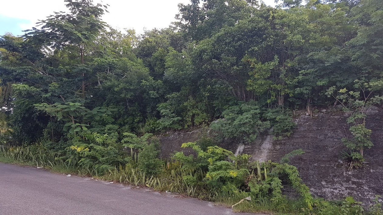 Land for Sale at Stapledon Gardens Vacant Lot Stapledon Gardens, Nassau And Paradise Island, Bahamas