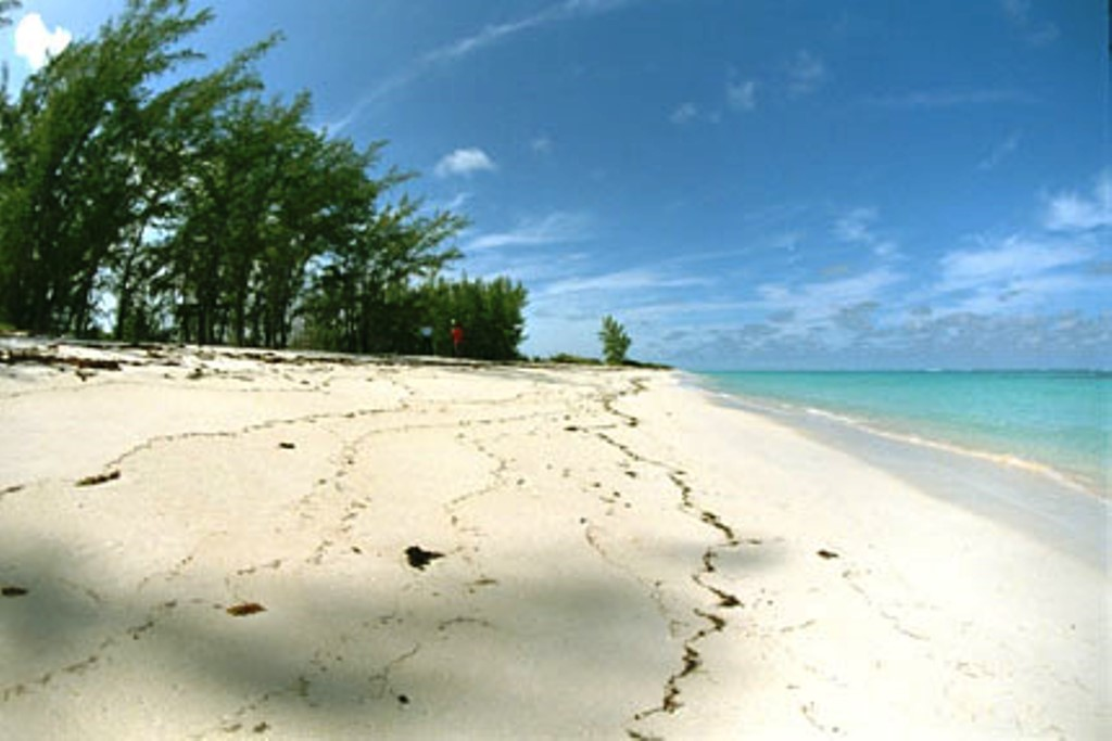 Land for Sale at Anguilla Tract near Arthur's Town, Cat Island - MLS 31500 Cat Island, Bahamas
