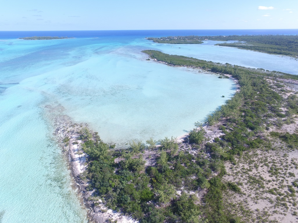 私人島嶼 為 出售 在 Blue Hole Cay Private Island MLS 31525 Andros, 巴哈馬