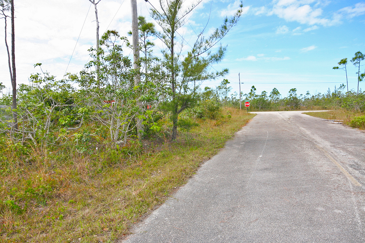 Land for Sale at Priced to Sell! Single Family Lot in Lincoln Green Lincoln Green, Grand Bahama, Bahamas
