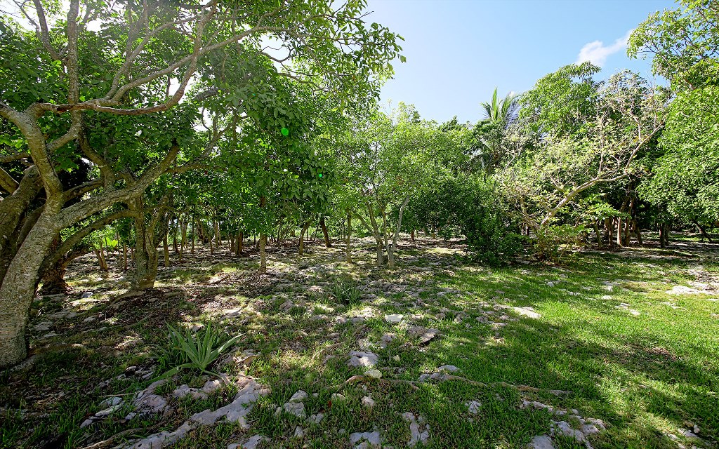 Land for Sale at Fox Hill Vacant Commercial Property Nassau And Paradise Island, Bahamas
