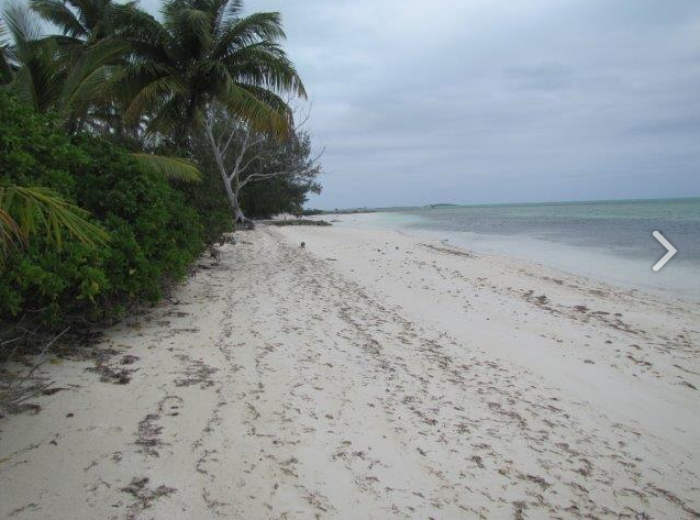 Land for Sale at Beachfront Acreage in Pinder's, Mangrove Cay Andros, Bahamas