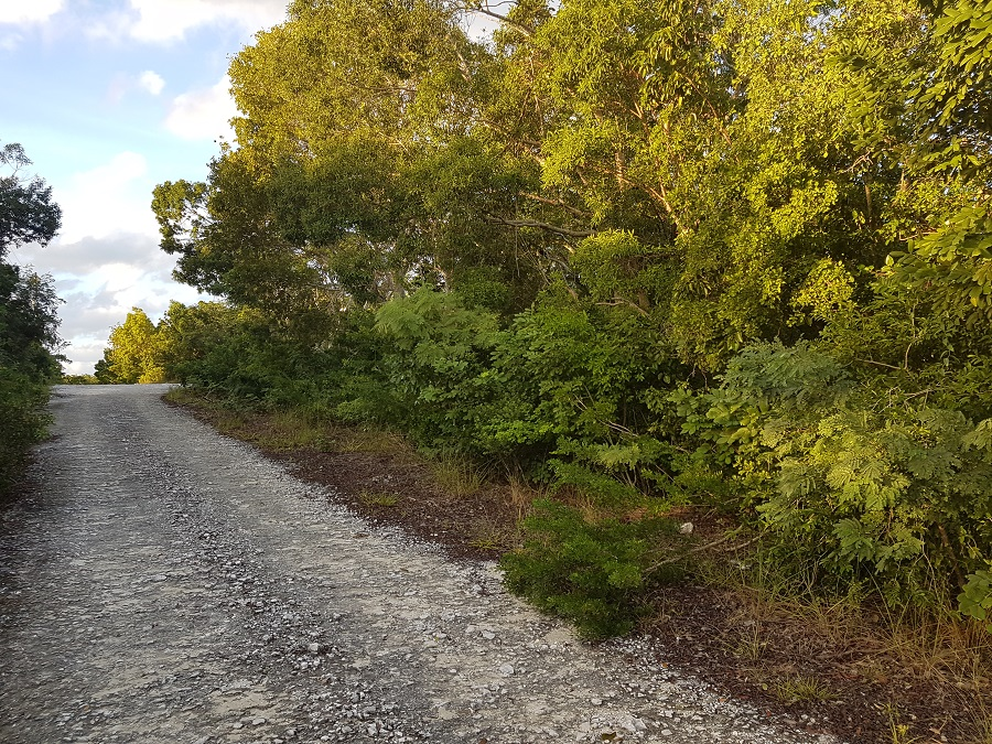 Land for Sale at Single Family Lot in Bahama Sound 9 Bahama Sound, Exuma, Bahamas