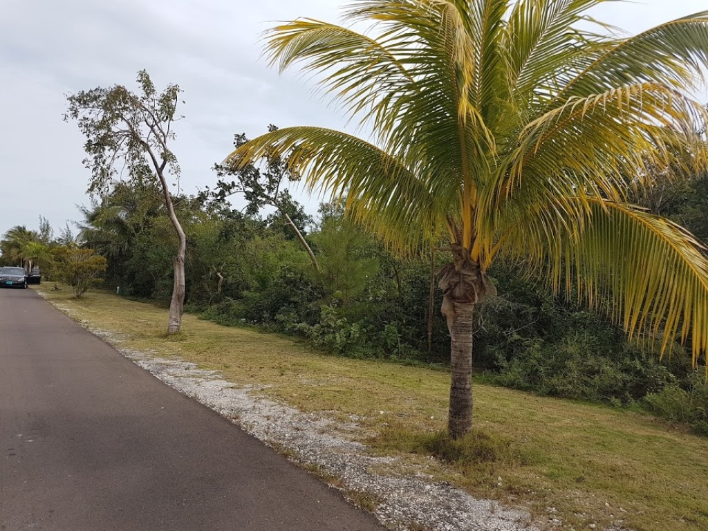 Land for Sale at Lot # 1, Block 11, Venice Bay - MLS 32367 Venice Bay, Nassau And Paradise Island, Bahamas