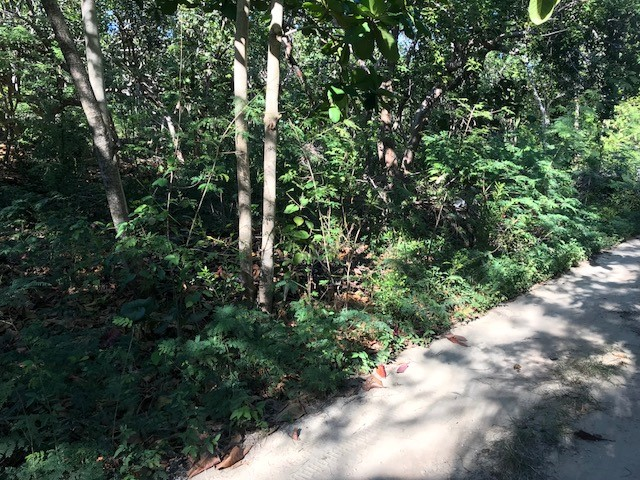 Land for Sale at Large Vacant Lot in Hope Town Point, Abaco - MLS 32842 Elbow Cay Hope Town, Abaco, Bahamas