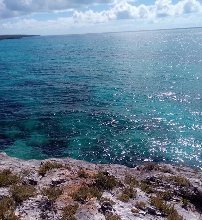 Terreno por un Venta en Pristine Waterfront With Acreage At Mutton Fish Point, Eleuthera Gregory Town, Eleuthera, Bahamas