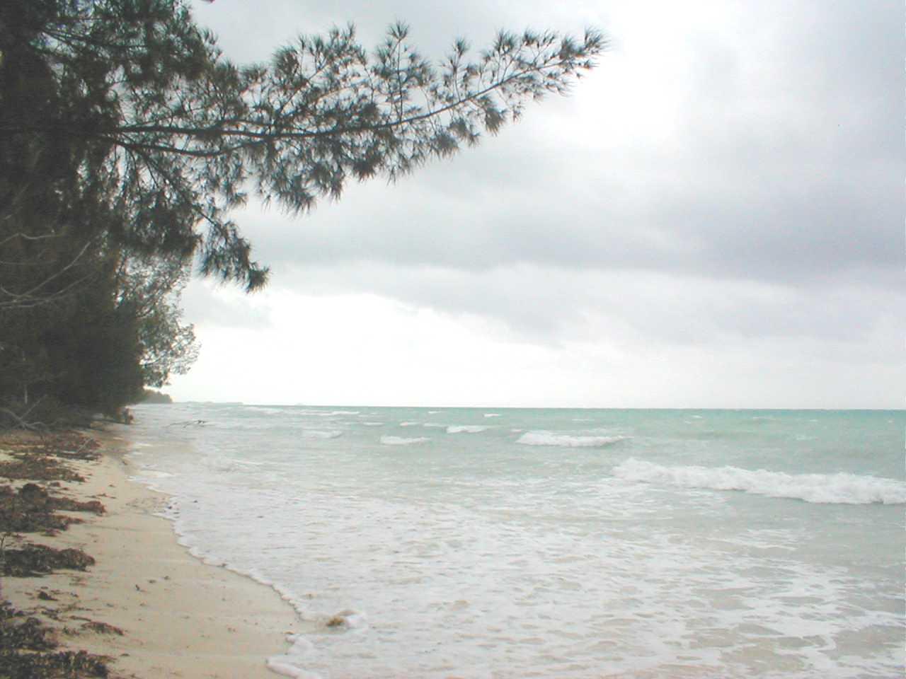 Land for Sale at Beachfront Acreage Grand Bahama, Bahamas