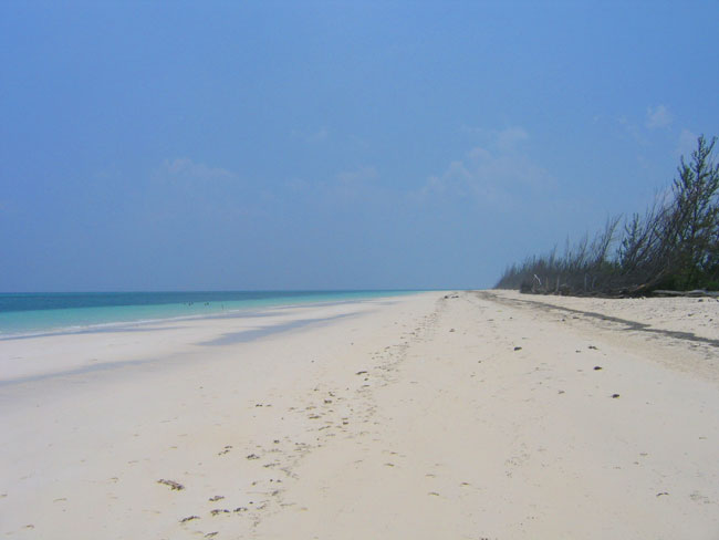Terrain / Lots pour l Vente à Breathtaking Large Beachfront Tract Grand Bahama And Vicinity