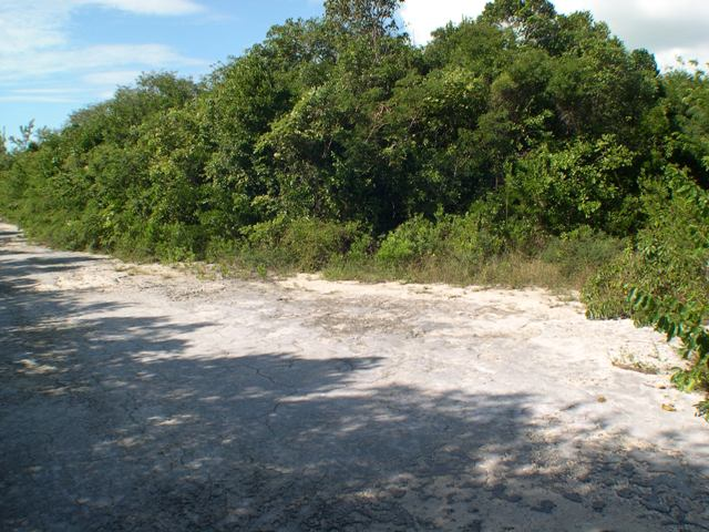 Land for Sale at Island Lot Stella Maris, Long Island, Bahamas