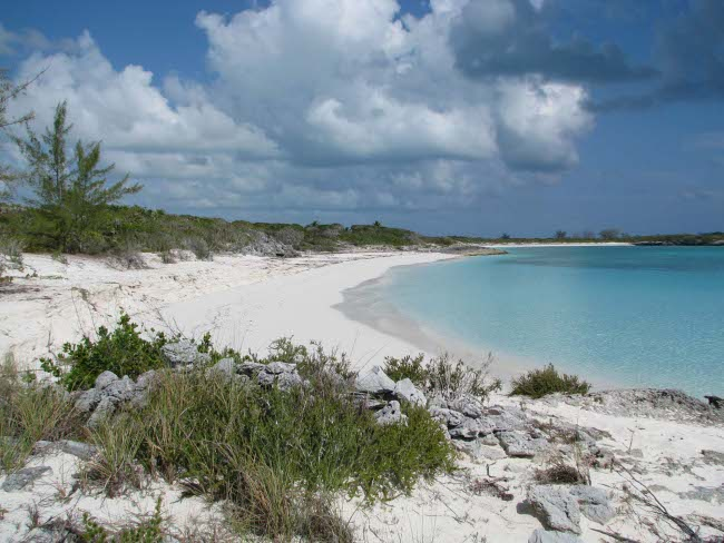 Land for Sale at Ocean Front Property Exuma, Bahamas