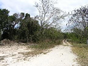 Land for Sale at Large Lot Love Beach, Nassau And Paradise Island, Bahamas