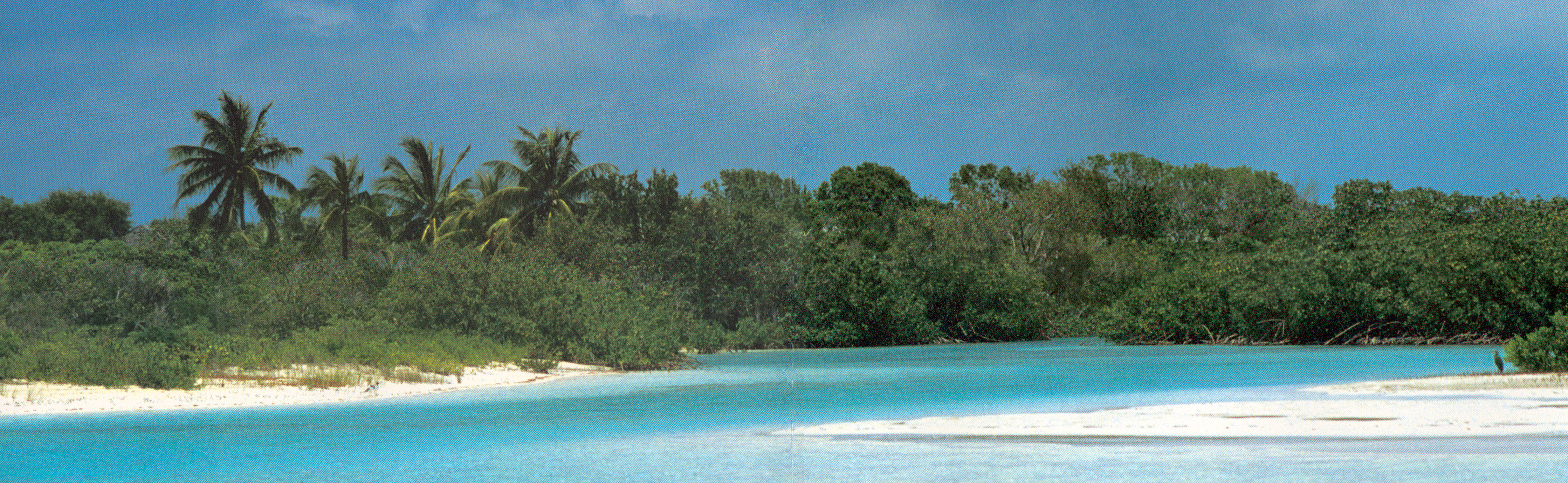 Additional photo for property listing at Beachfront Acreage Crooked Island, Bahamas