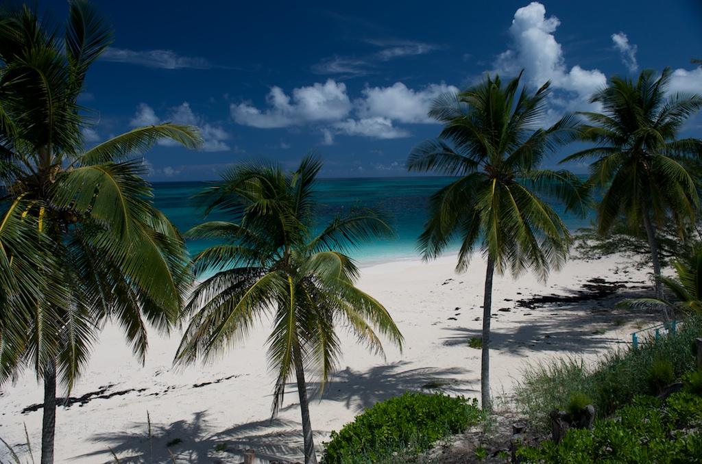 Single Family Home for Rent at 7 Palms Beachfront Estate Palmetto Point, Eleuthera, Bahamas