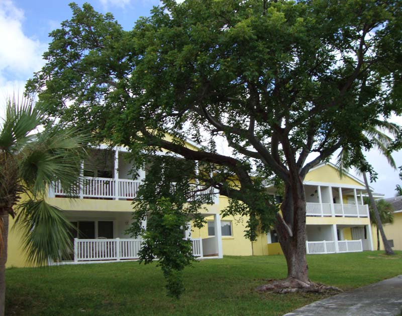 Co-op / Condo for Rent at Regatta # 302 Marsh Harbour, Abaco, Bahamas