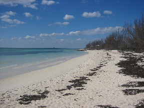 Additional photo for property listing at Beautiful Beachfront Lots and Canal Lots Grand Bahama And Vicinity