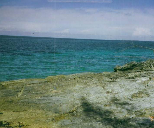 Additional photo for property listing at Maury Tract Abaco, Bahamas