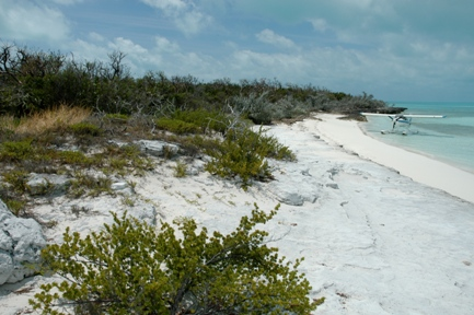 Additional photo for property listing at Finley Cay Private Island Eleuthera, Багамские Острова