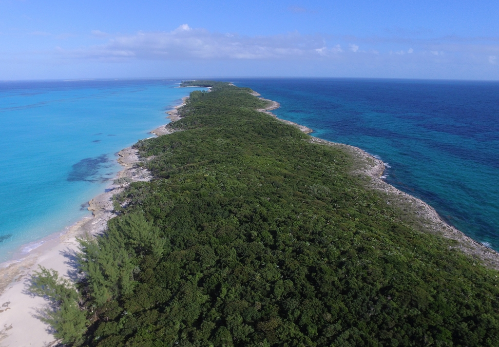 Additional photo for property listing at Land Parcel Bahamalar