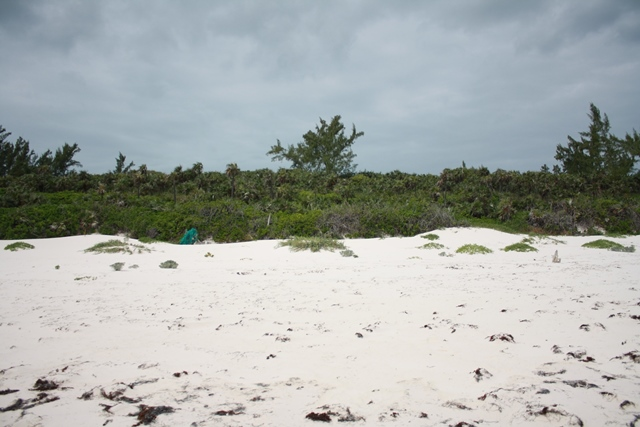 Additional photo for property listing at Unique Homesite Collection at Windermere - Section A, Lot 8 and 125 or 9 and 126 Eleuthera, Μπαχαμεσ