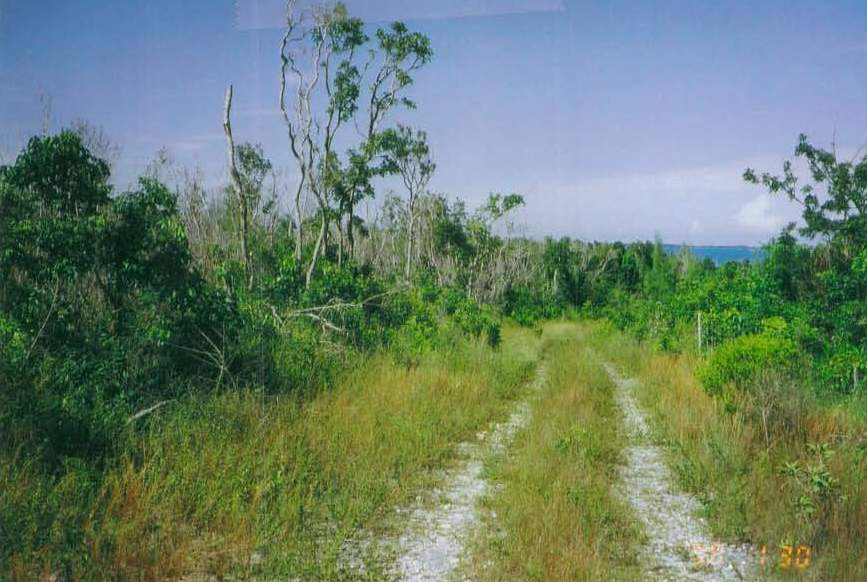 Additional photo for property listing at Maury Tract Abaco, Bahamalar