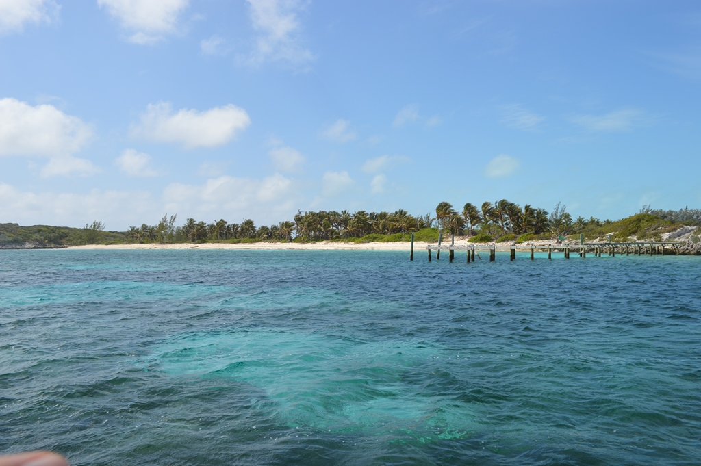 Additional photo for property listing at Alder Cay, Private Island in The Berry Islands MLS:30608 Berry Islands, バハマ