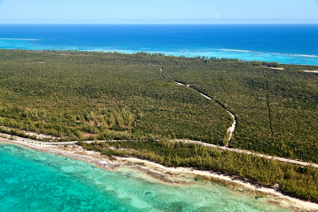 Additional photo for property listing at Fabulous Investment Acreage, Central Eleuthera Eleuthera, Bahamalar