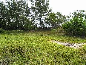 Additional photo for property listing at Kemps Bay Waterfront Property 安德罗斯岛, 巴哈马