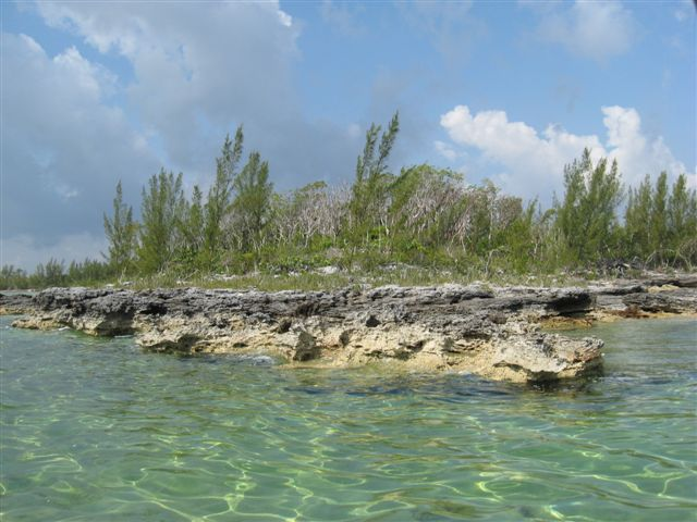Additional photo for property listing at Well Priced Acreage In Close Proximity To Marsh Harbour Abaco, Bahamas