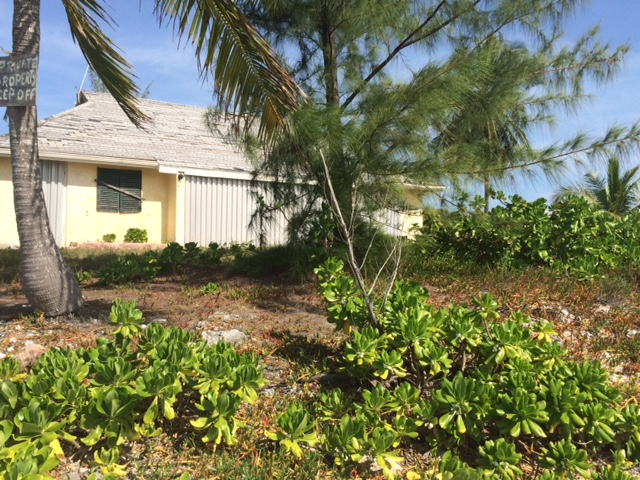 Additional photo for property listing at Bunny Hutch St.Peter's Point Long Island, Bahamas
