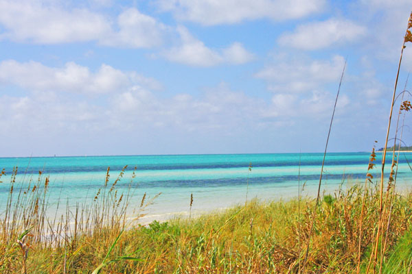 Additional photo for property listing at Commercial Tourism-Zoned Acreage Grand Bahama And Vicinity