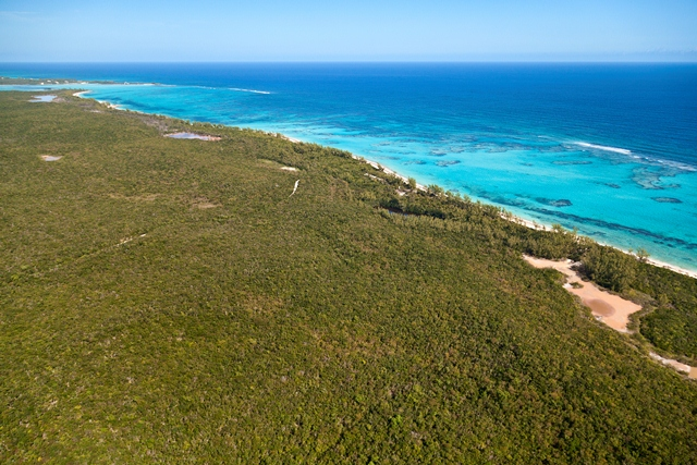 Additional photo for property listing at Fabulous Investment Acreage, Central Eleuthera Eleuthera, Bahama Eilanden