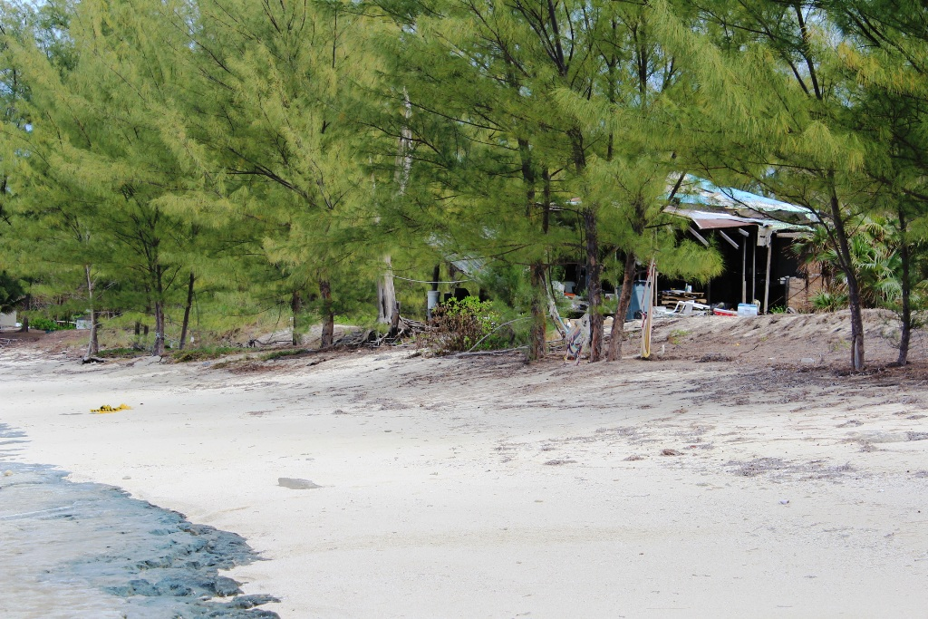 Additional photo for property listing at Beachfront Lot at Sampson Ridge - MLS 32657 Bimini, Bahamas