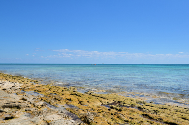 Additional photo for property listing at Outstanding Ocean to Canal Land in Prime Location Ready for Development with NO PROPERTY TAXES! Bell Channel, Lucaya, Grand Bahama Bahamas
