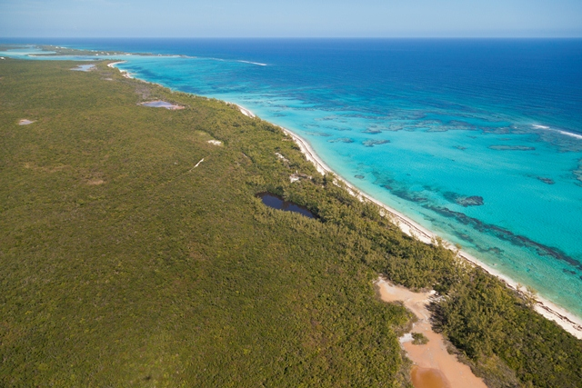 Additional photo for property listing at Fabulous Investment Acreage, Central Eleuthera Eleuthera, Bahamas